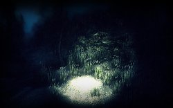 Desivé prostredieHaunt: The Real Slender Game