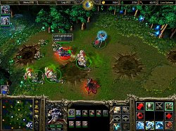 Herné prostredieWarcraft III: Reign of Chaos