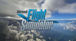 Microsoft Flight Simulator