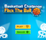 Basket Ball Challenge Flick The Ball
